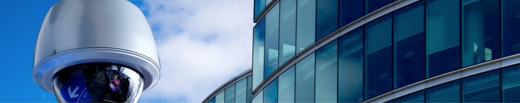 Risk & Physical Security Services for Businesses